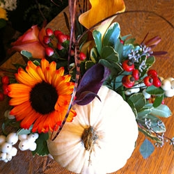 walnut_grove_floral_thanksgiving1